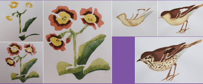 different stages as various layers are applied for the auricula and wren designs